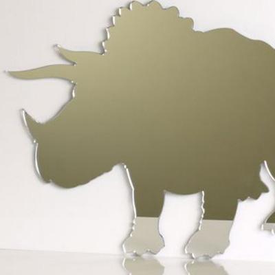 Dinosaur Triceratops Mirror 45cm