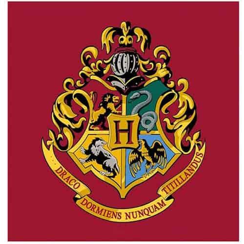 Harry Potter Emblem Square Rug